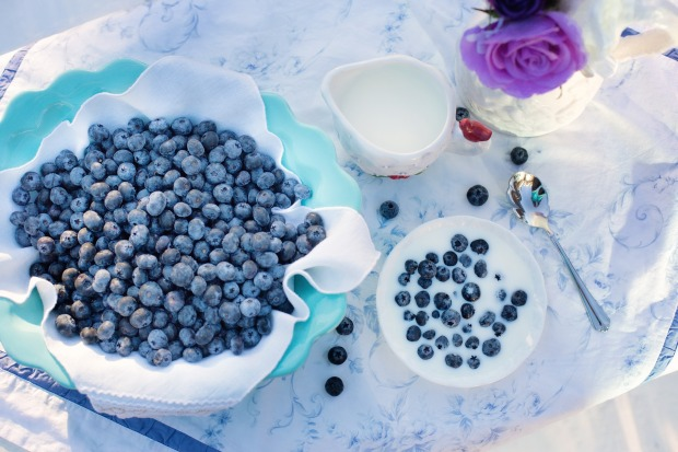 blueberries-1576409_1920