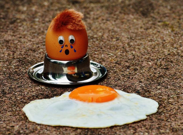 egg-1368258_1920