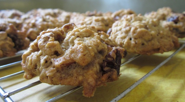oatmeal-raisin-cookies-1511599_1920